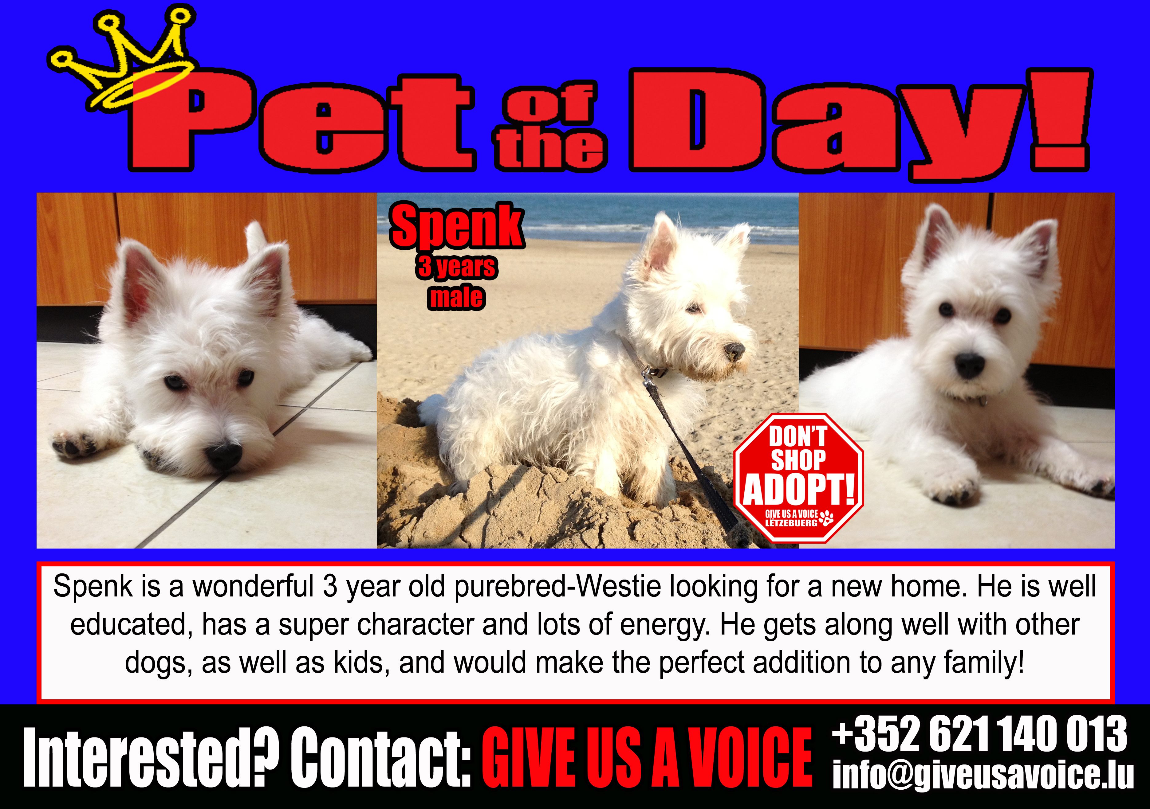 05-26-16 Pet of the Day