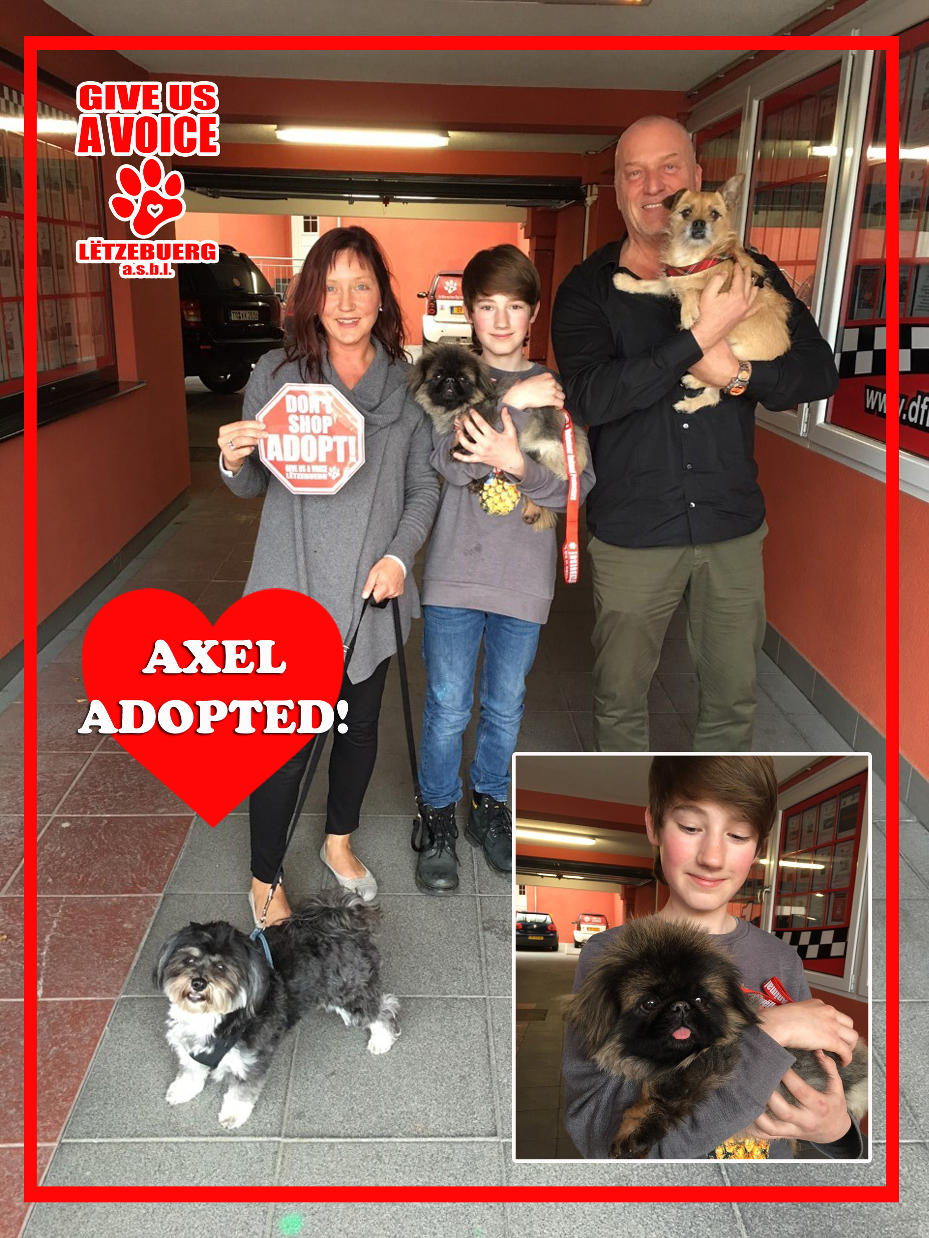 Axel Adopted! copy