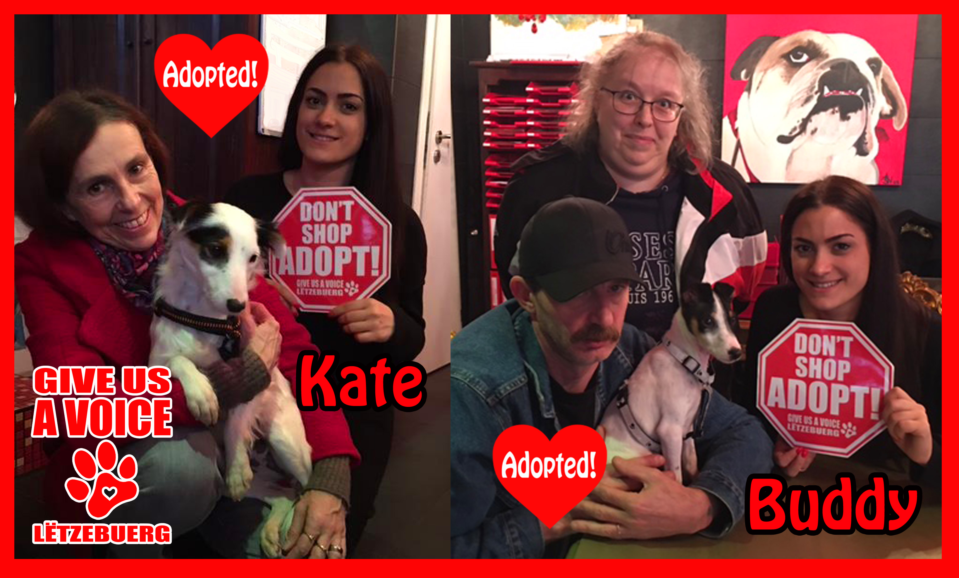 Buddy and Kate Adopted! copy