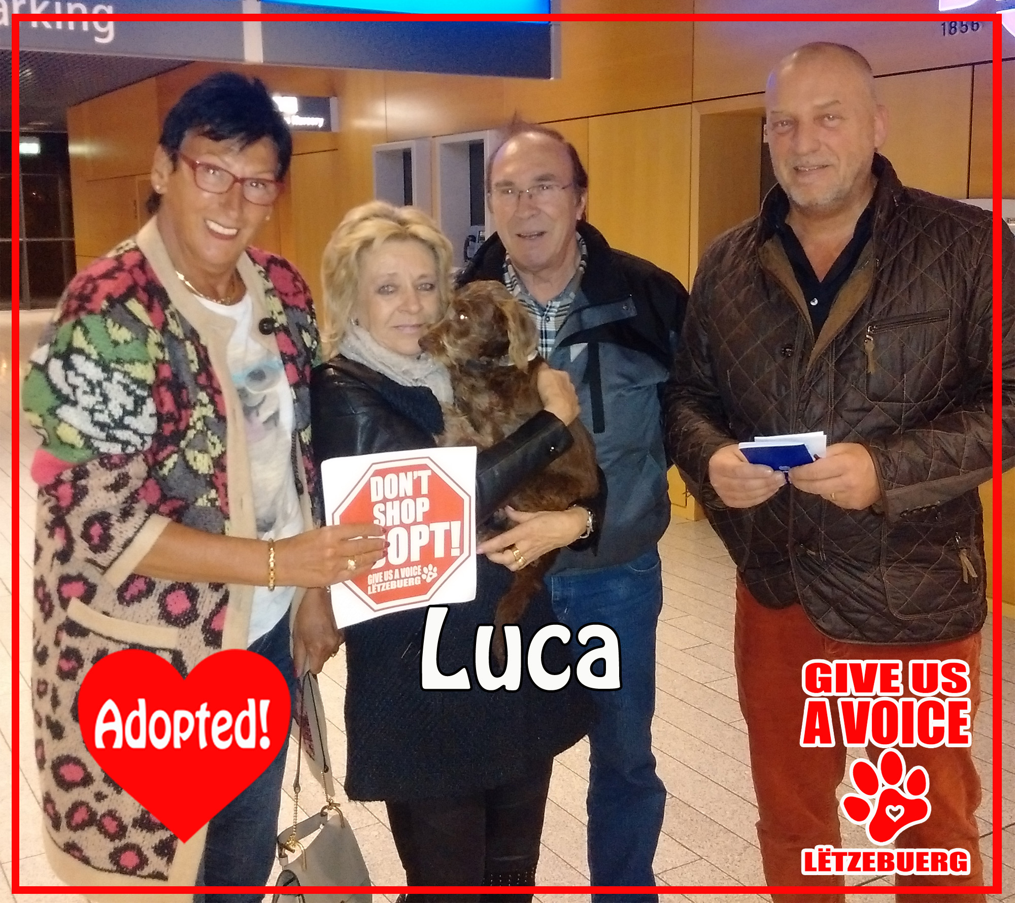 Luca adopted! copy