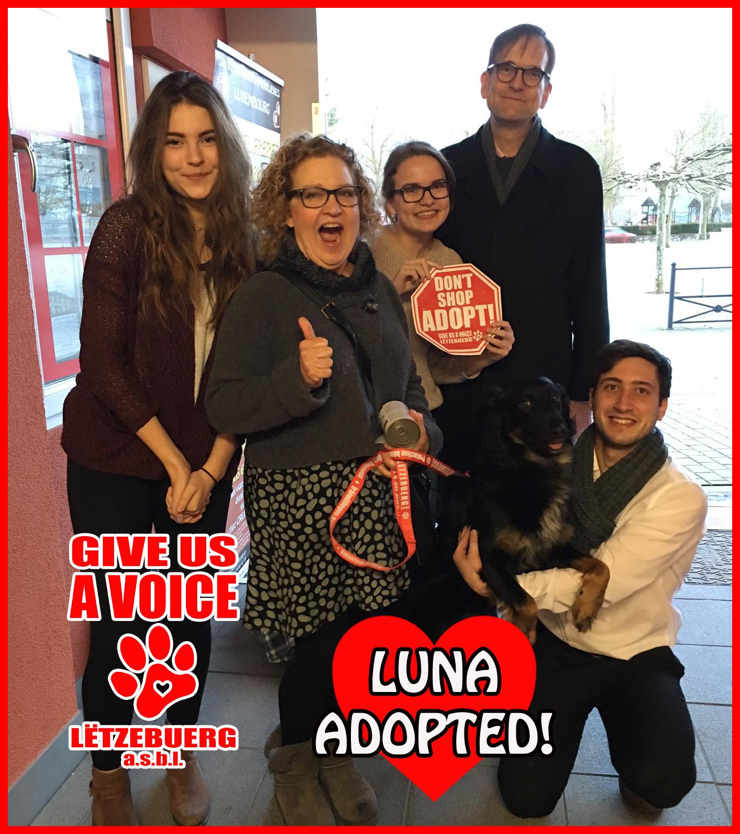 Luna Adopted! copy