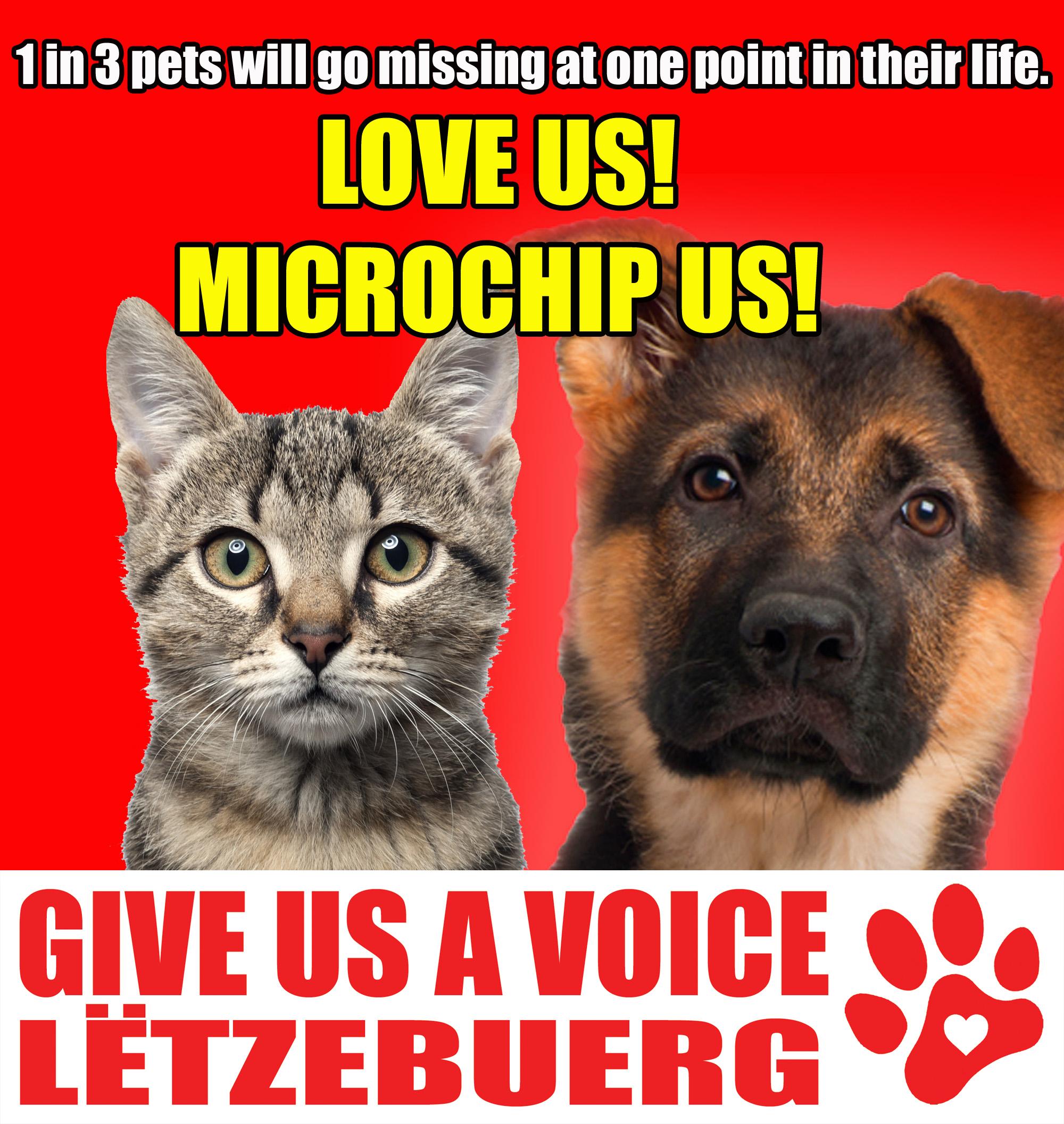 Microchip your pets copy