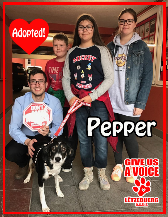 pepper-adopted-copy