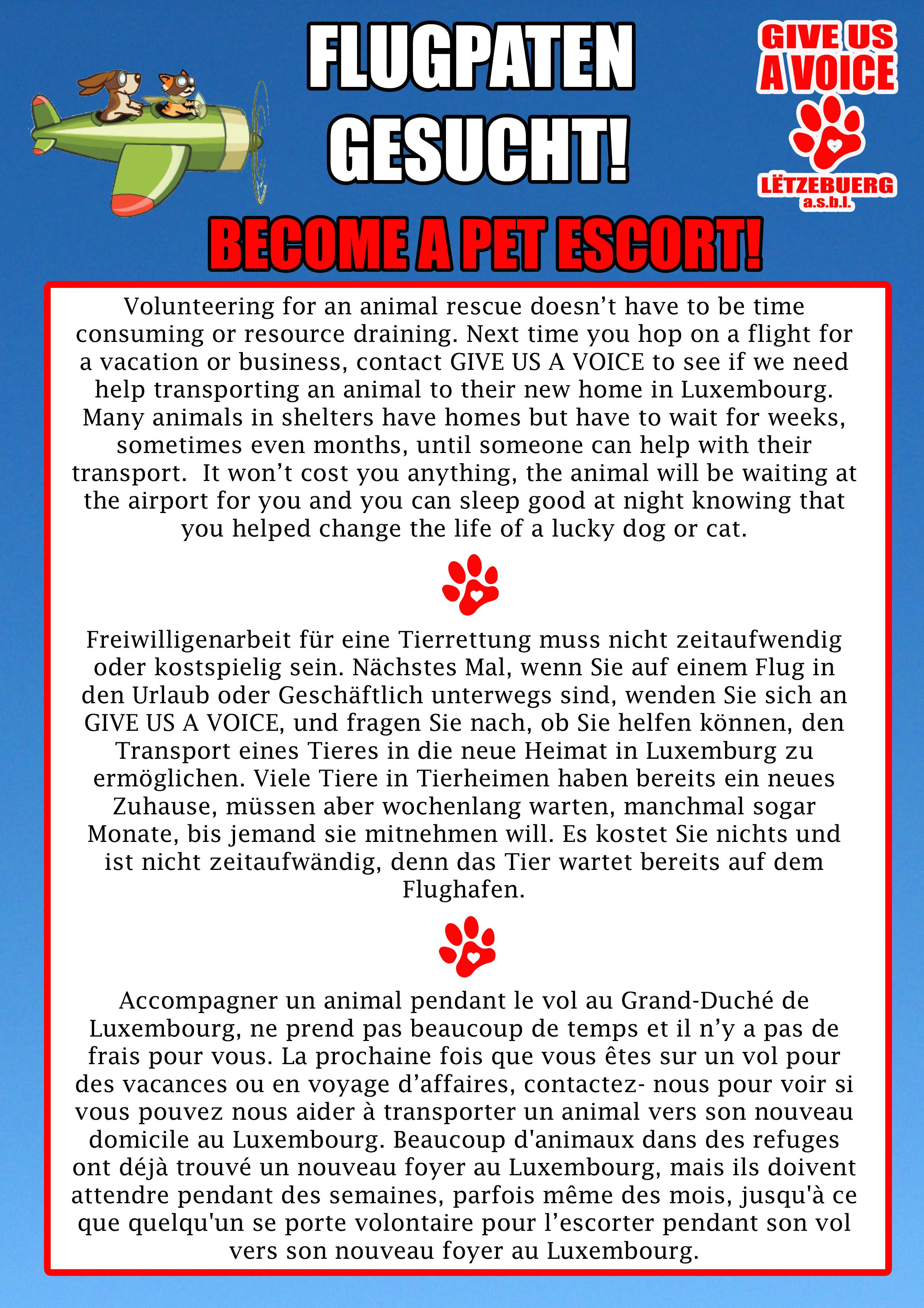 Pet escort flyer copy