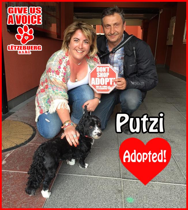 Putzi adopted! copy
