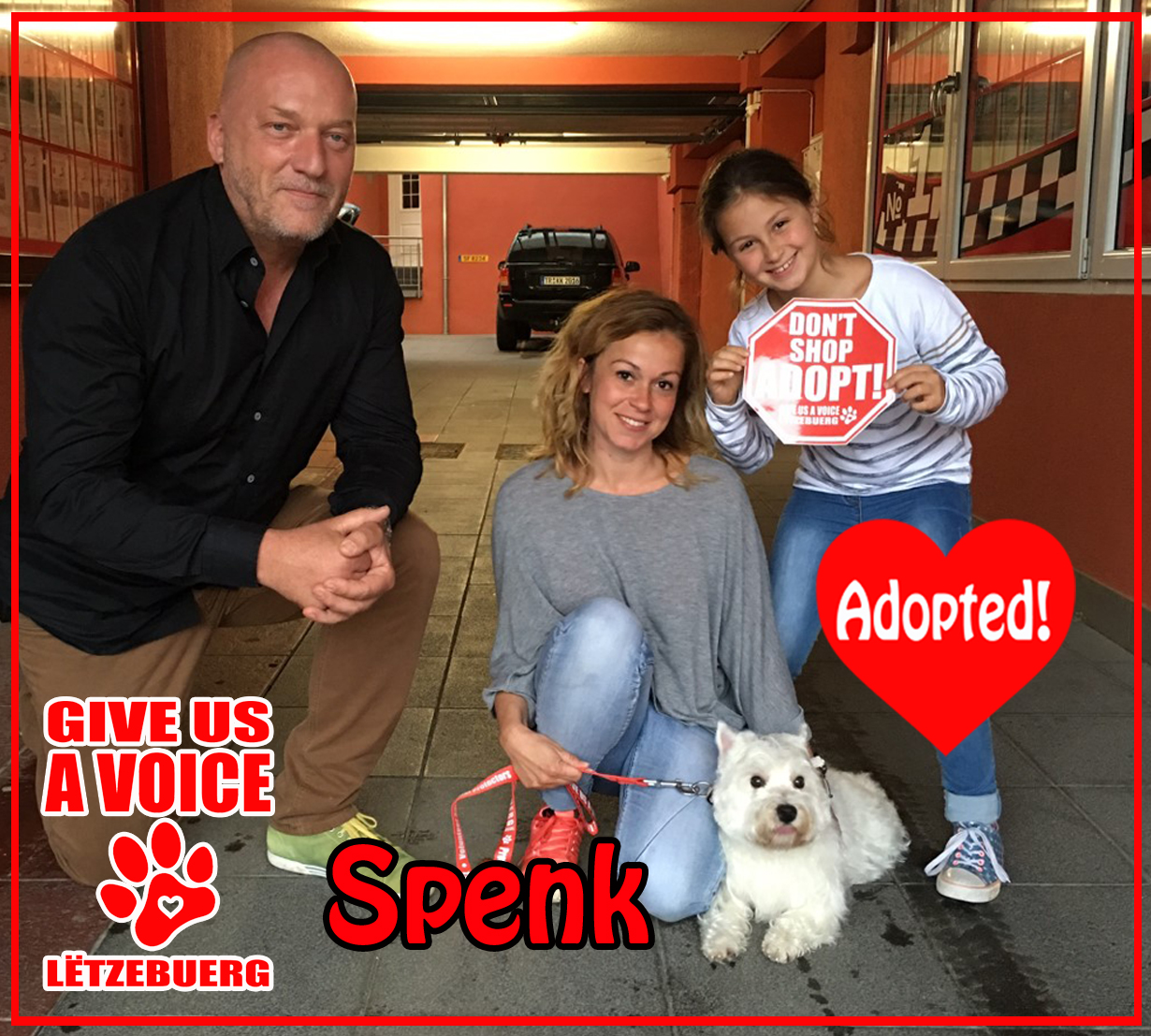 Spenk Adopted! copy