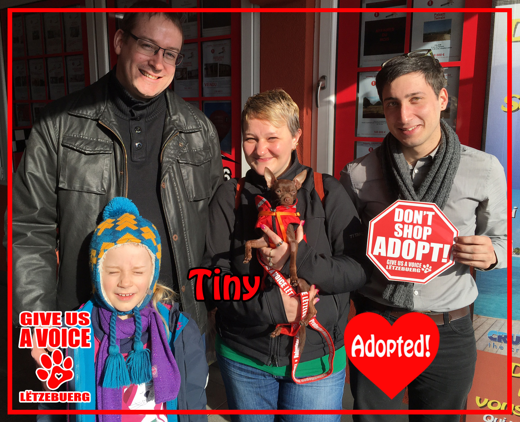 Tiny Adopted! copy