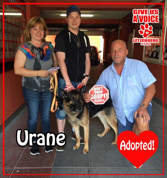 Urane Adopted copy
