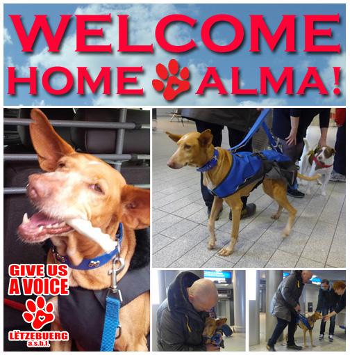 Welcome Alma copy
