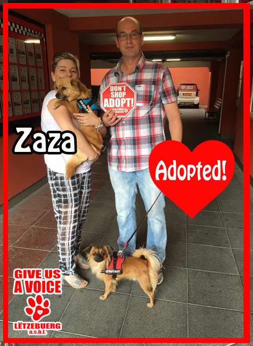 Zaza Adopted! copy