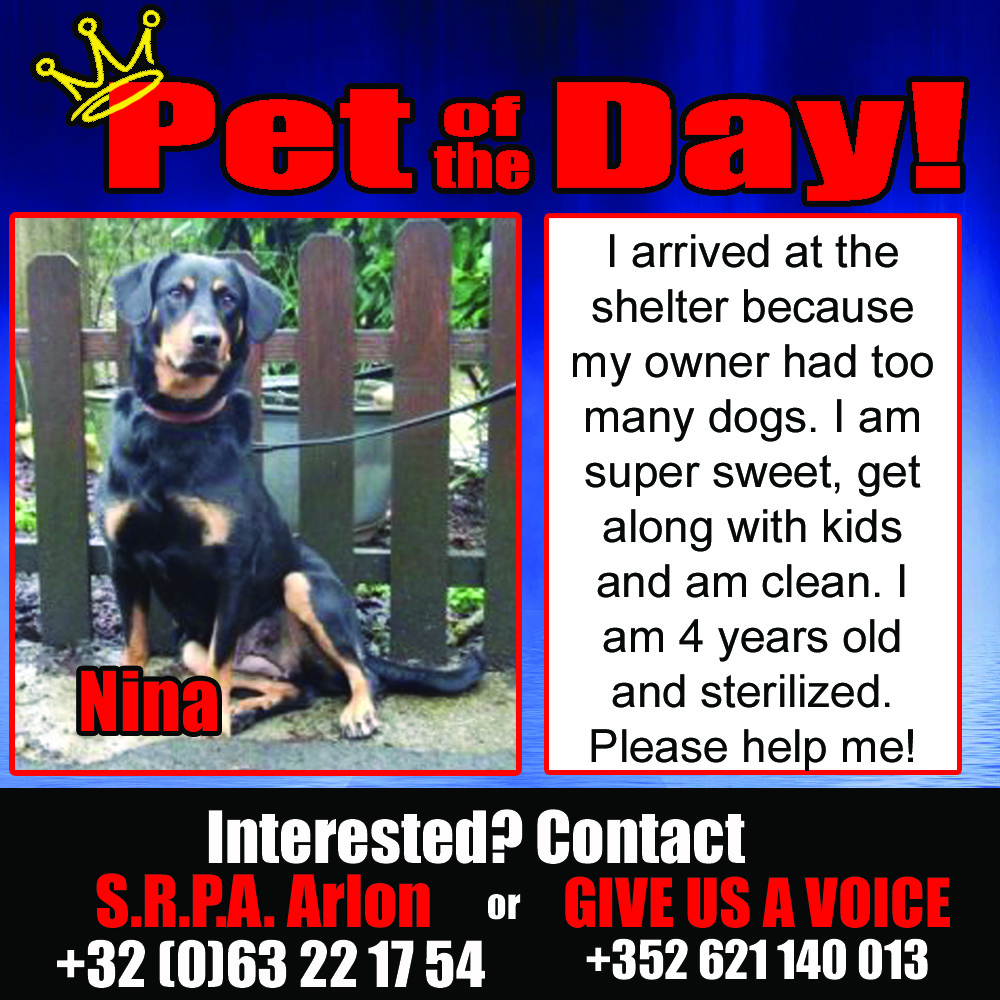 01-08-16 Pet of the Day