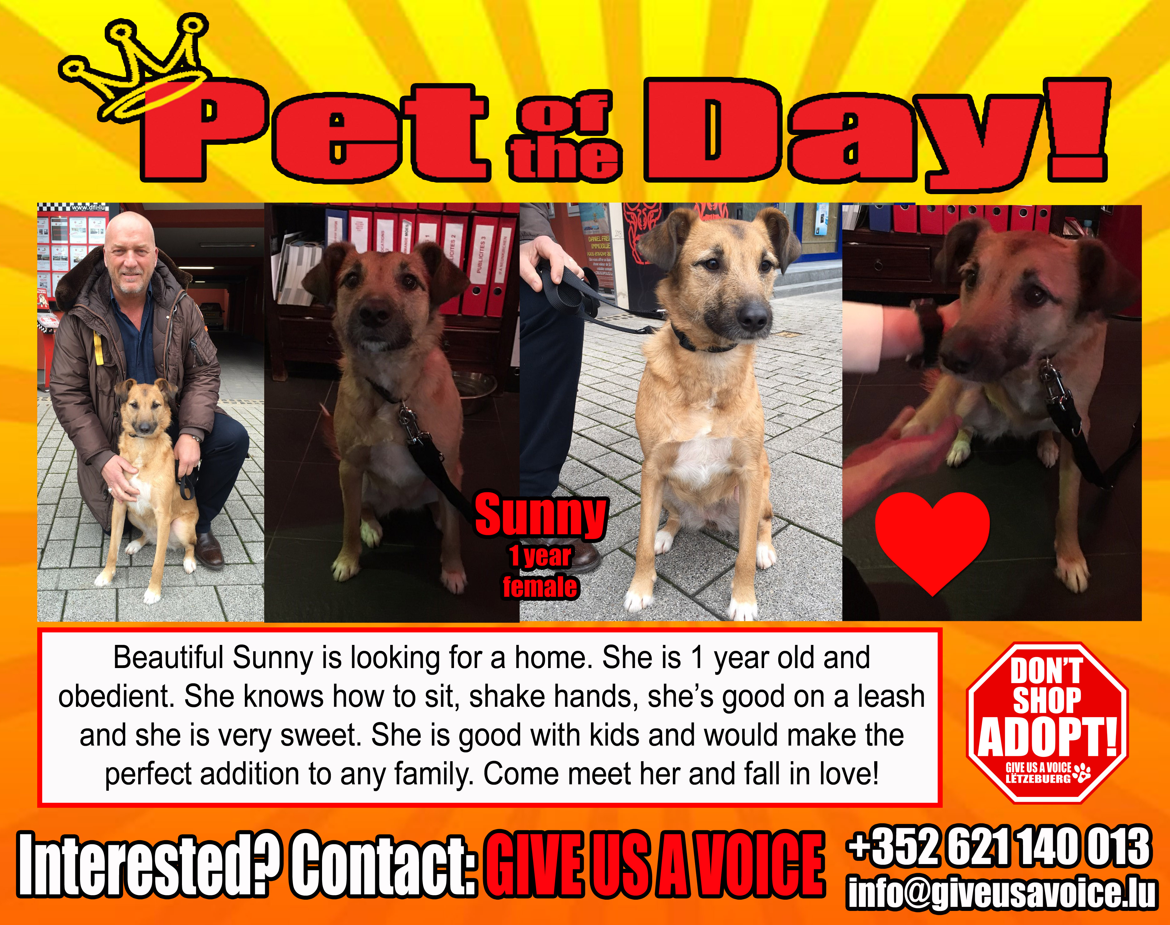 04-29-16 Pet of the Day