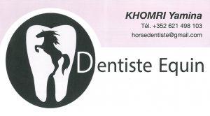 Horse dentist logo