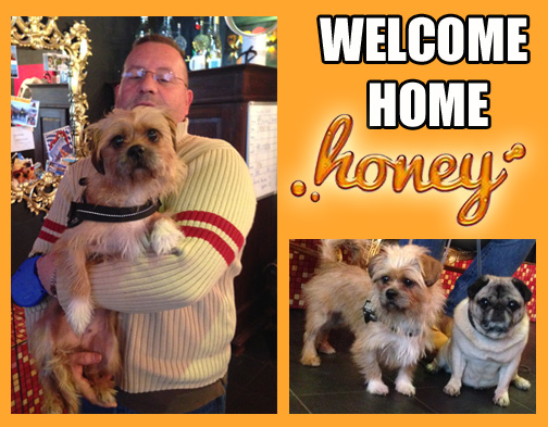 Honey - Welcome copy