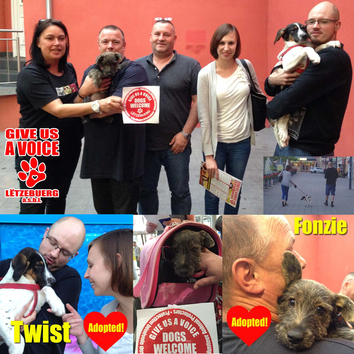 Fonsi and Twist Adopted! copy