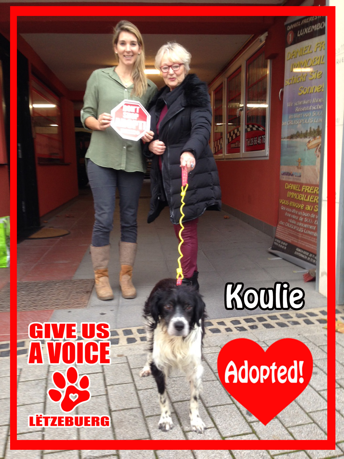 Koulie Adopted copy