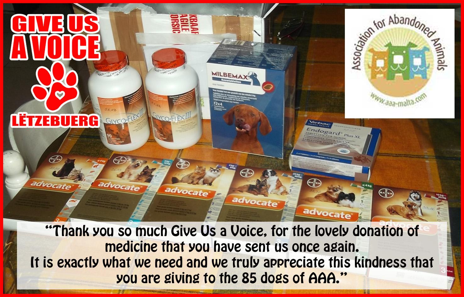 Nov 2015 Medicine Donation to AAA Malata copy