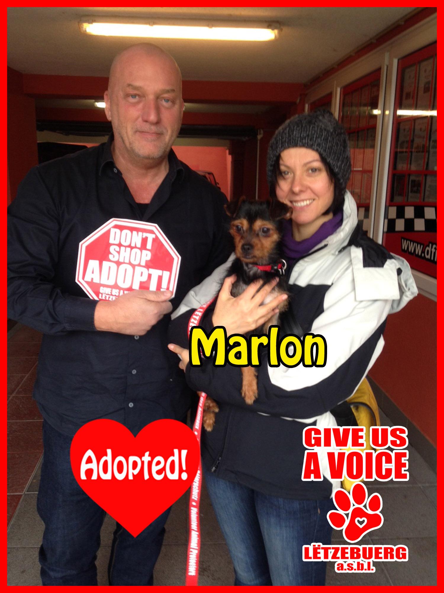 Marlon Adopted! copy