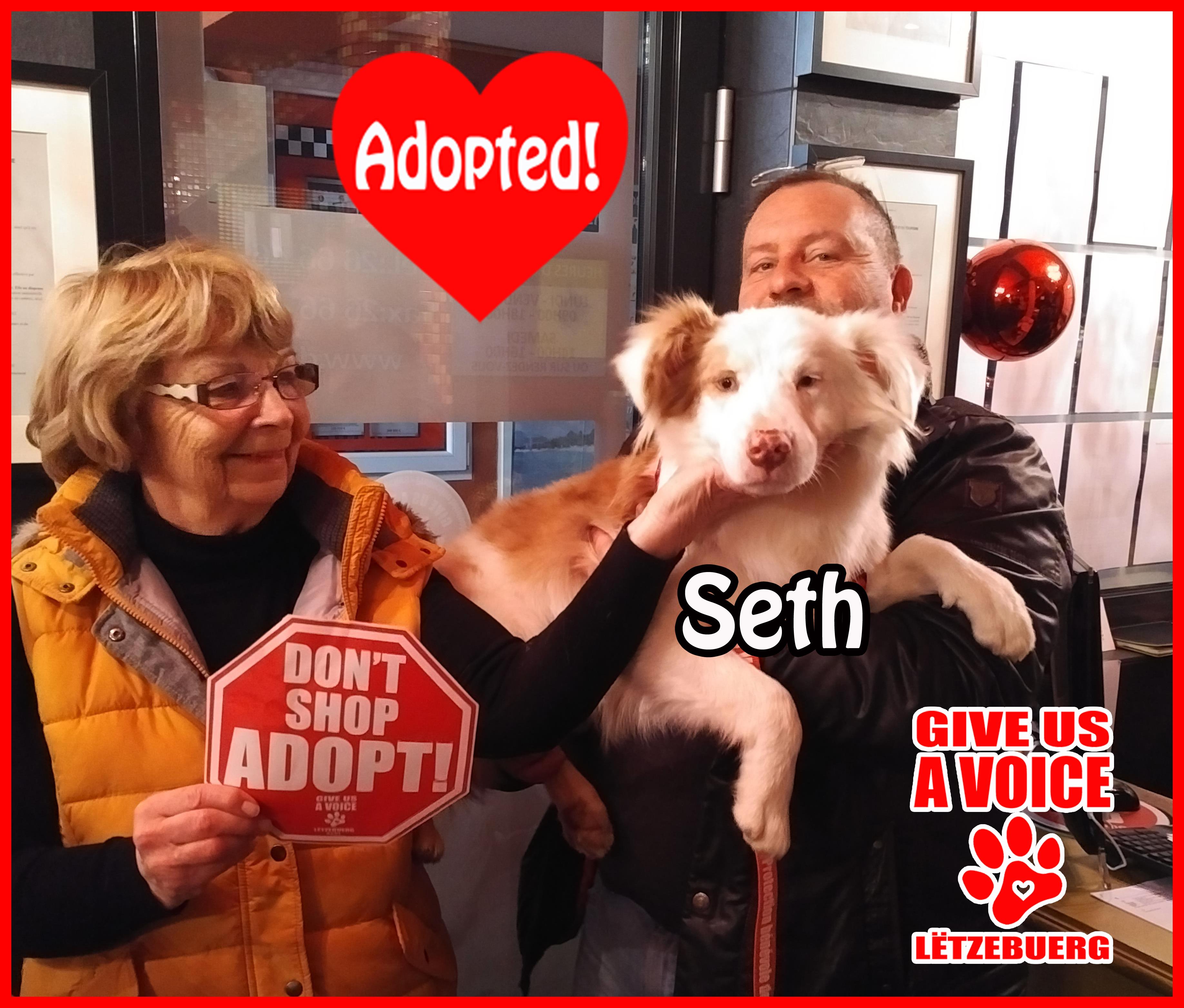 Seth Adopted! copy