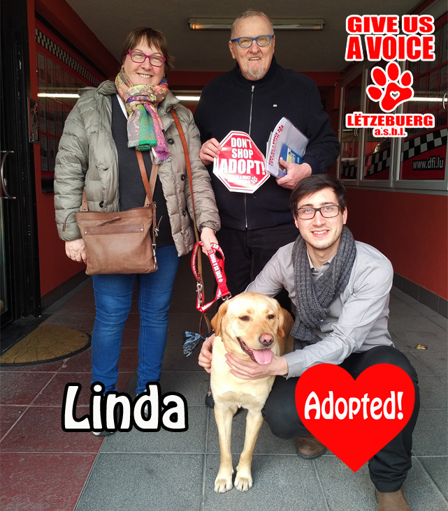Linda adopted! copy