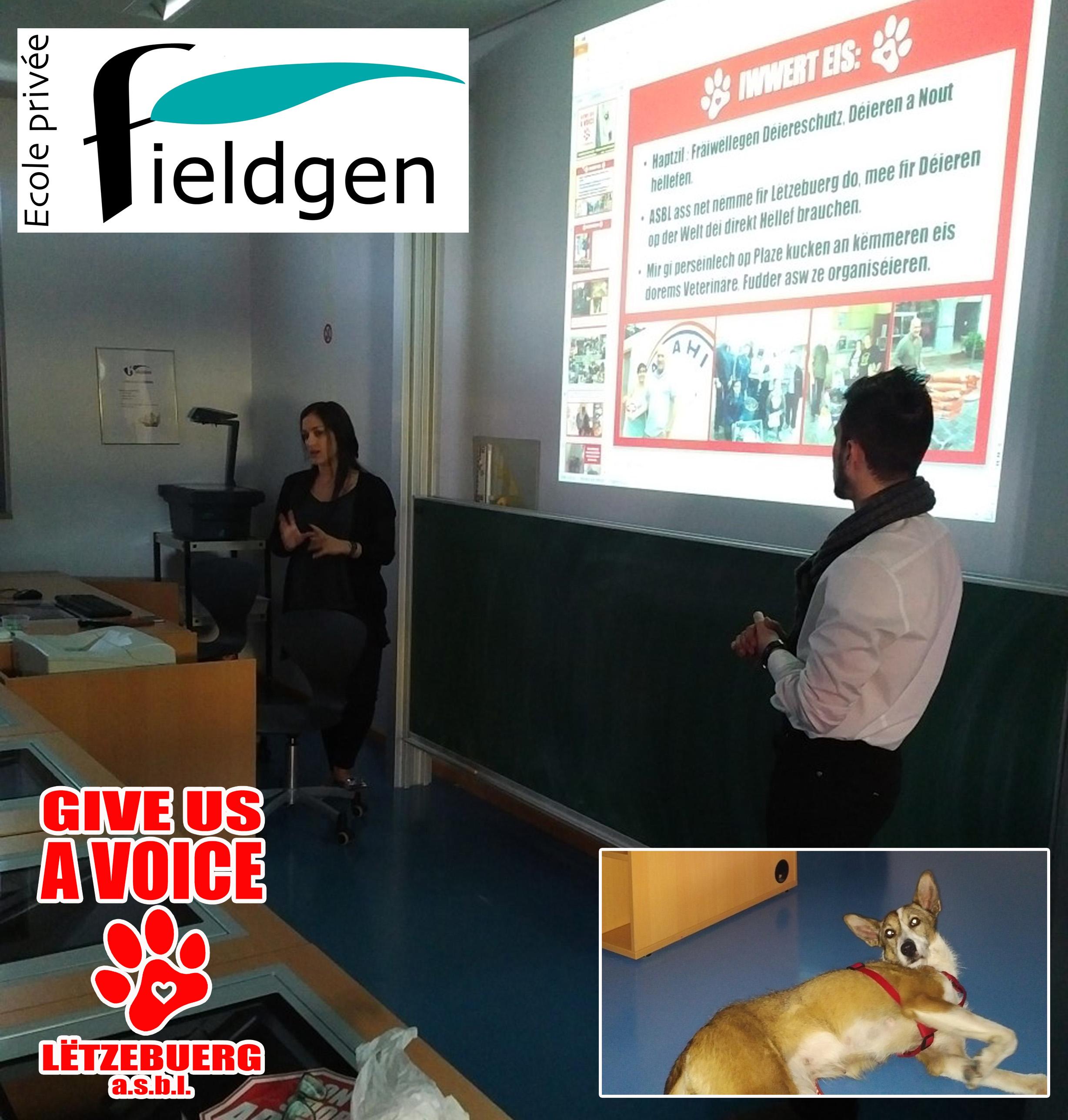Fieldgen presentation copy