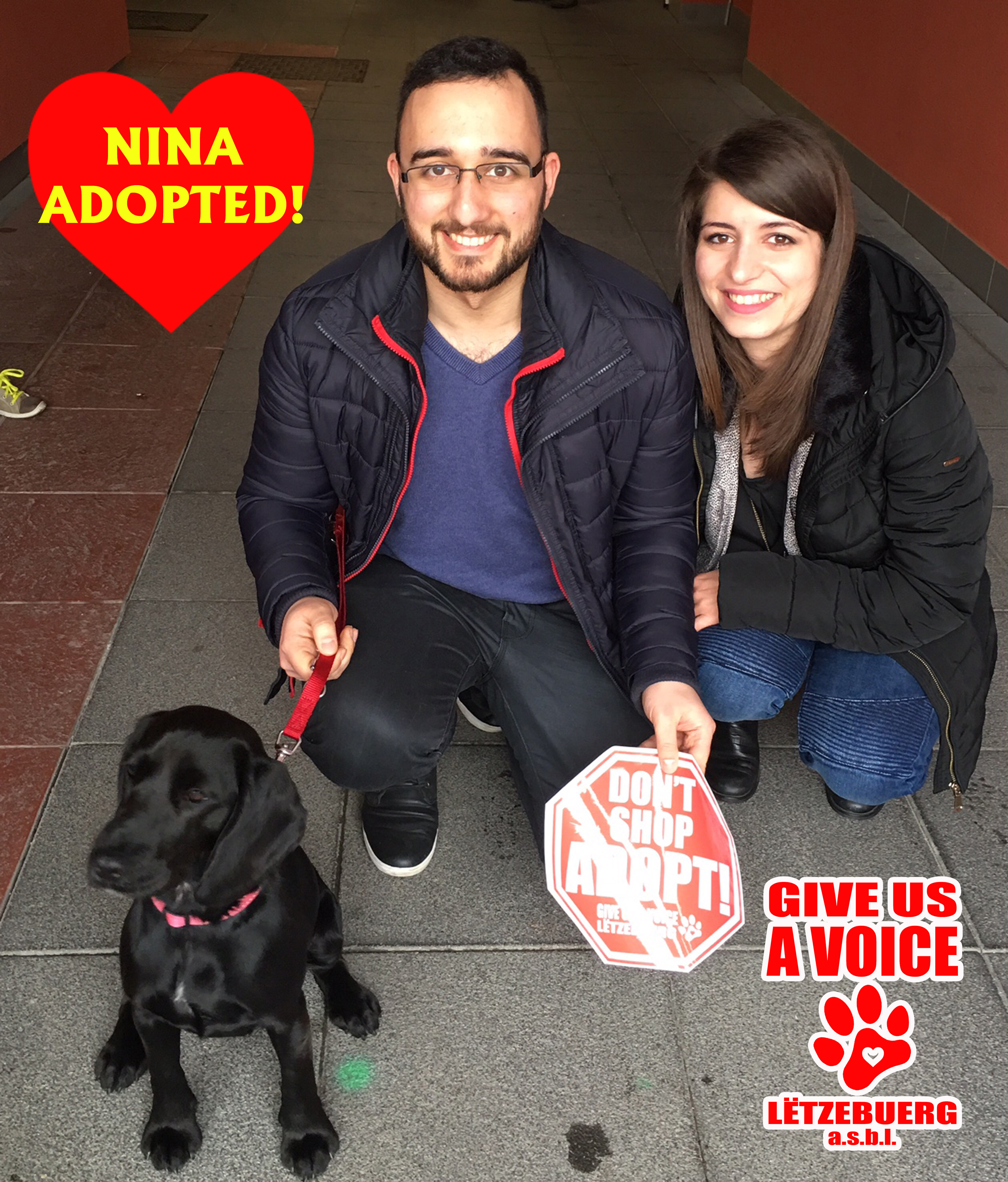 Nina adopted! copy