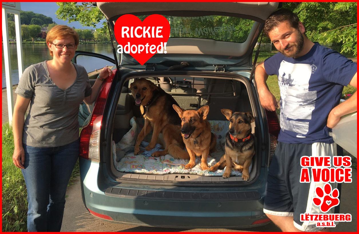 Rickie adopted copy