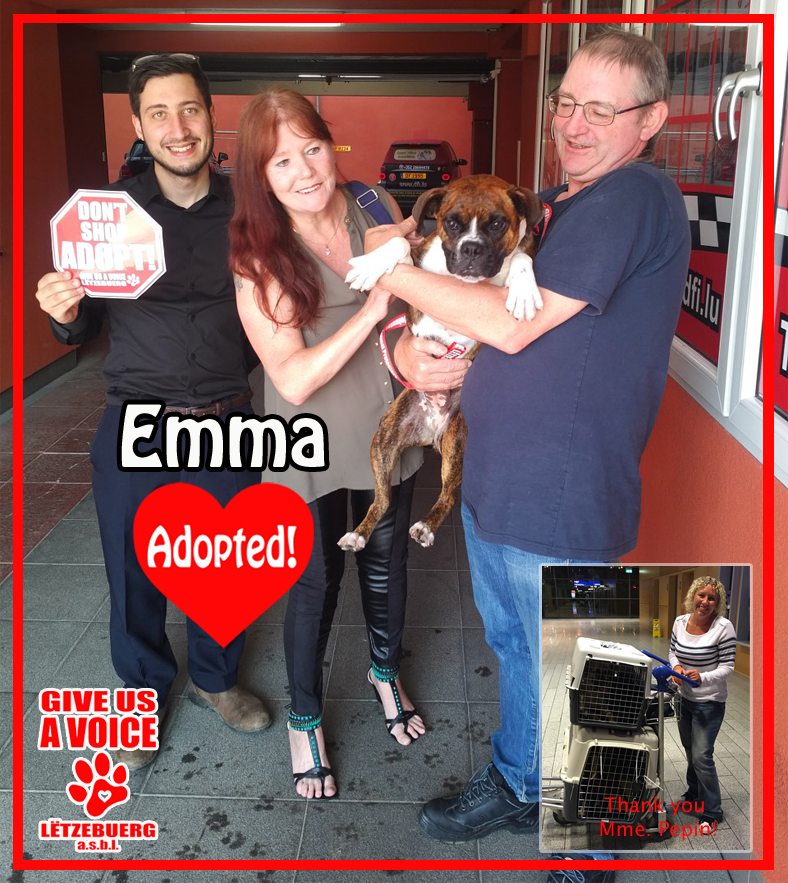 Emma adopted! copy