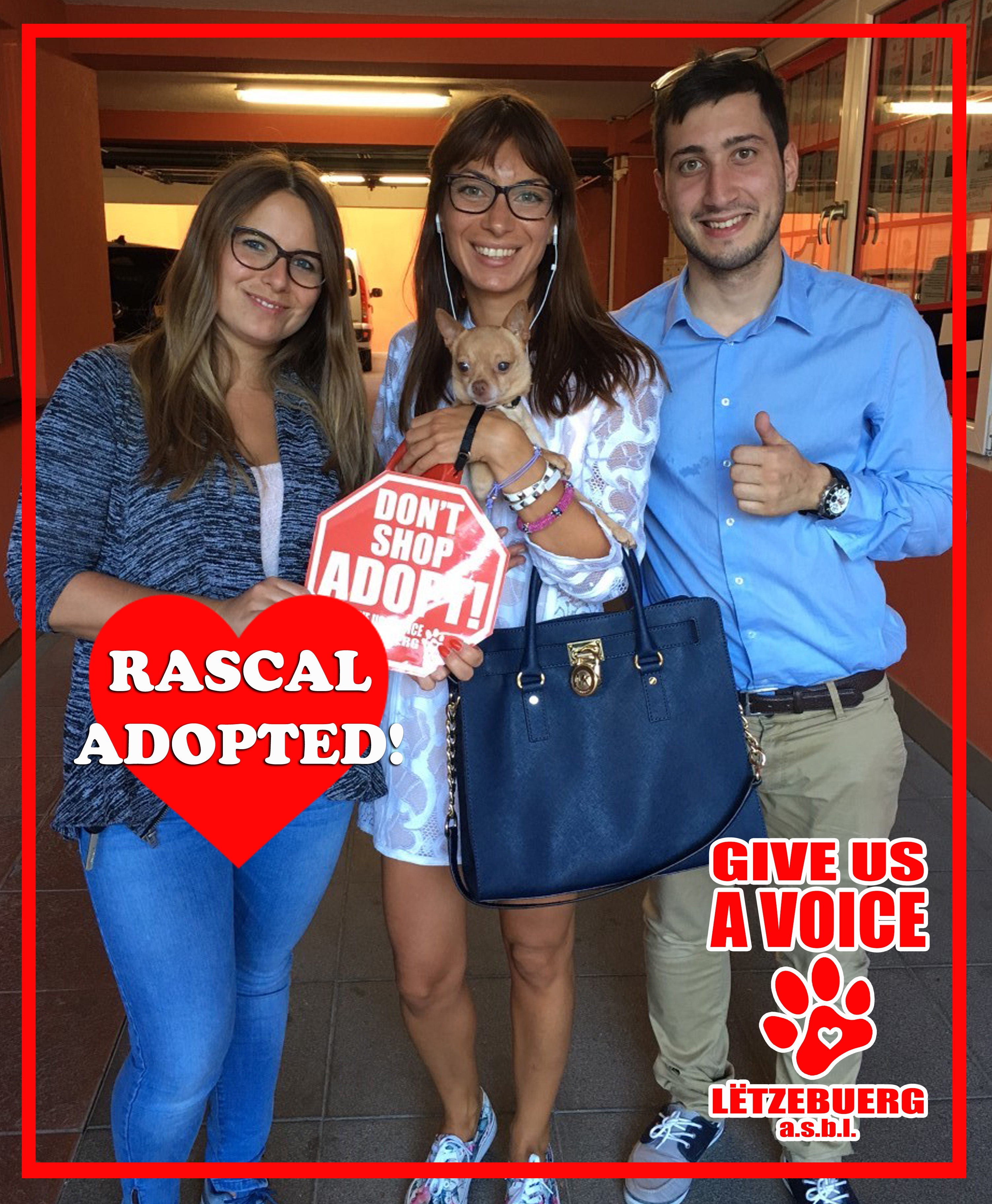 Rascal Adopted! copy