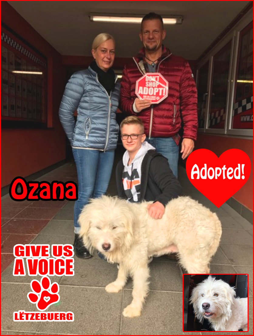 ozana-adopted-copy